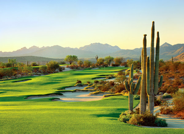 We-Ko-Pa Golf Club | Fort. McDowell, Ariz.                       Green fees: $75-$210                       480-836-9000, wekopa.com