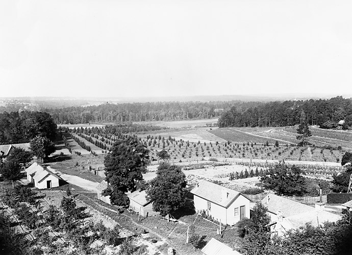 1932: The former site of Fruitland Nurseries opens as Augusta National Golf Club, co-founded by Bobby Jones and businessman Clifford Roberts. Only 29 bunkers are built, at a time when most courses have more than 100. Jones considers bunkers 75 to 150 yards from the tee unnecessary. Soon dozens of courses follow suit, and Jones' thinking becomes conventional wisdom.