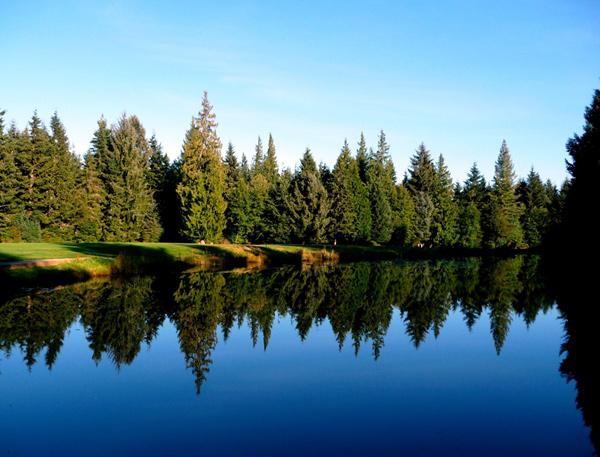 Campbell River, BC6,699 yards$30.50-$691-866-923-3674storeycreek.bc.ca