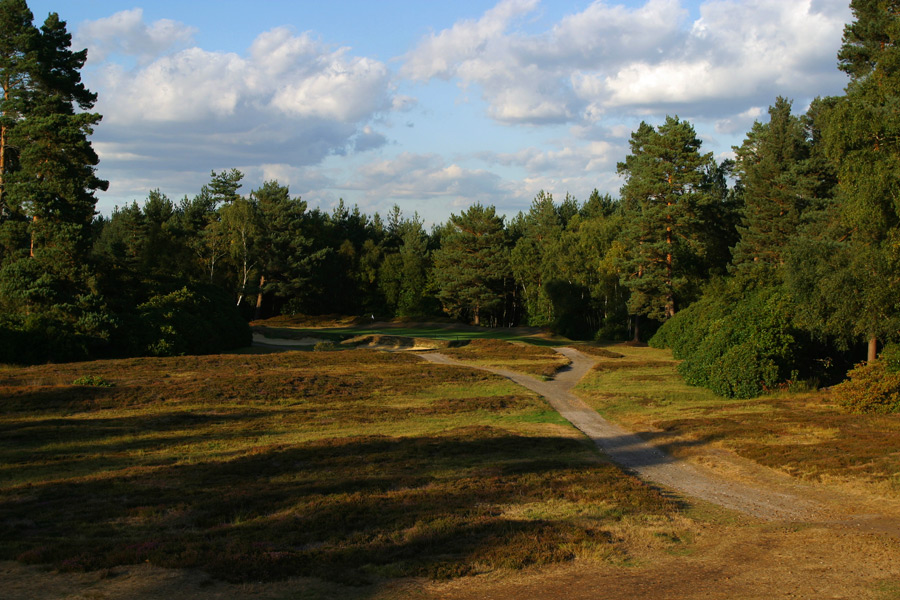 Swinley Forest                       This ultra-exclusive club could be the country's toughest tee time. Another Harry Colt design, the beautiful heathland layout is short by today's standards (just over 6,000 yards) but not any less of a challenge. Getting a tee time is harder than any of its holes.                       No. 92 on Golf Magazine's Top 100 Courses in the World