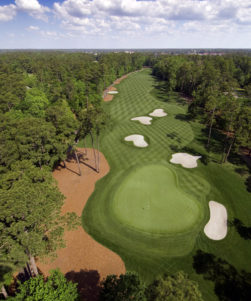 Tidewater Golf Club & Plantation                       North Myrtle Beach, S.C.                       $109-$209                       866-772-4669                       tidewatergolf.com                                              No. 1                       Par 5                       526 yards