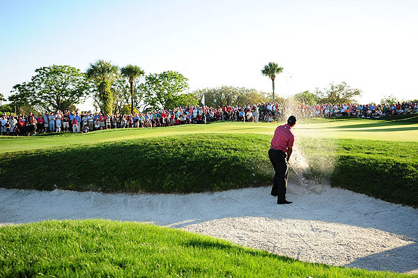 Tiger found himself in the sand on the 14th, which he parred, and went on to birdie the 15th hole.