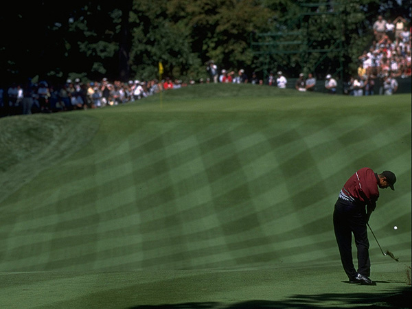 1999                                                                     Woods attacked the pins all week at Medinah. His aggressive play was rewarded with many birdie chances and ovations from the crowds.