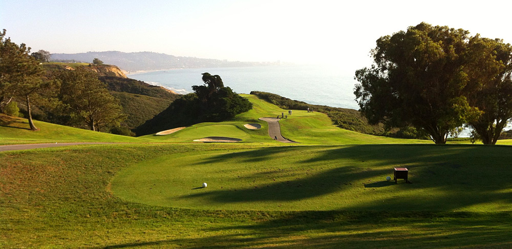 Torrey Pines -- San Diego, Calif.                       Submitted by Joe Coleman