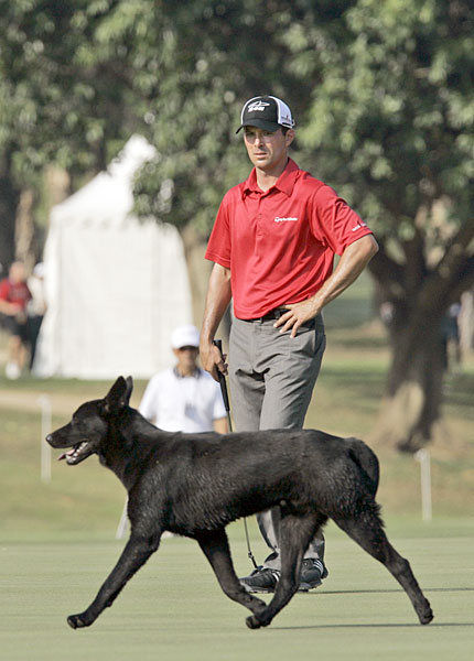 Mike Weir had to wait for a dog to clear the fairway at the 2007 Hong Kong Open.