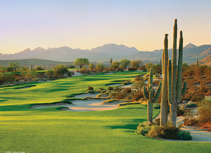 41. We-Ko-Pa Golf Club (Saguaro) Fort McDowell, Ariz.; Bill Coore/Ben Crenshaw (2006) -- $75-$230, wekopa.com
