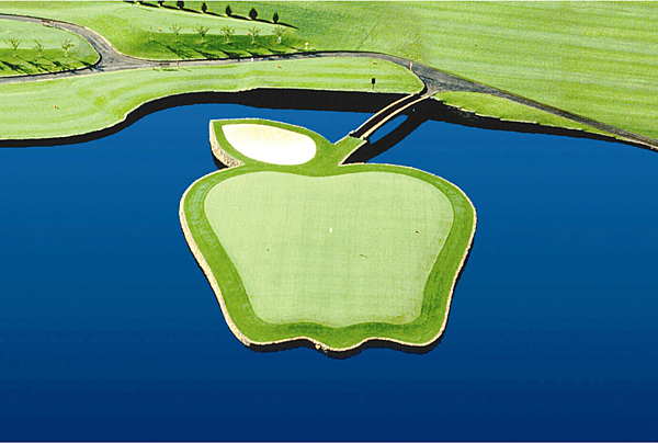 Apple Tree Resort; Yakima, Wash.; No. 17, 180 yards                     Winding its way through a Washington Delicious apple orchard, this aptly named layout waits until the 17th to reveal the best of the bunch. This sweet one-shotter plays to an apple-shaped green guarded back-left by a bunker that resembles a leaf. The entire green complex connects to dry land via a stem in the form of a 50-foot walk bridge. You can take a bite out of this apple for less than $50.