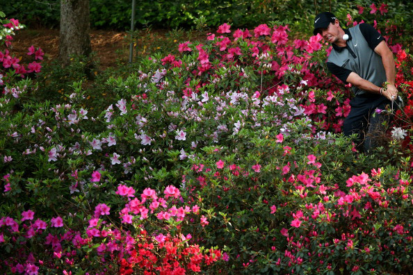 Rory McIlroy of Northern Ireland hits a shot out of the the azaleas bushes behind the 13th green during the second round of the 2014 Masters Tournament