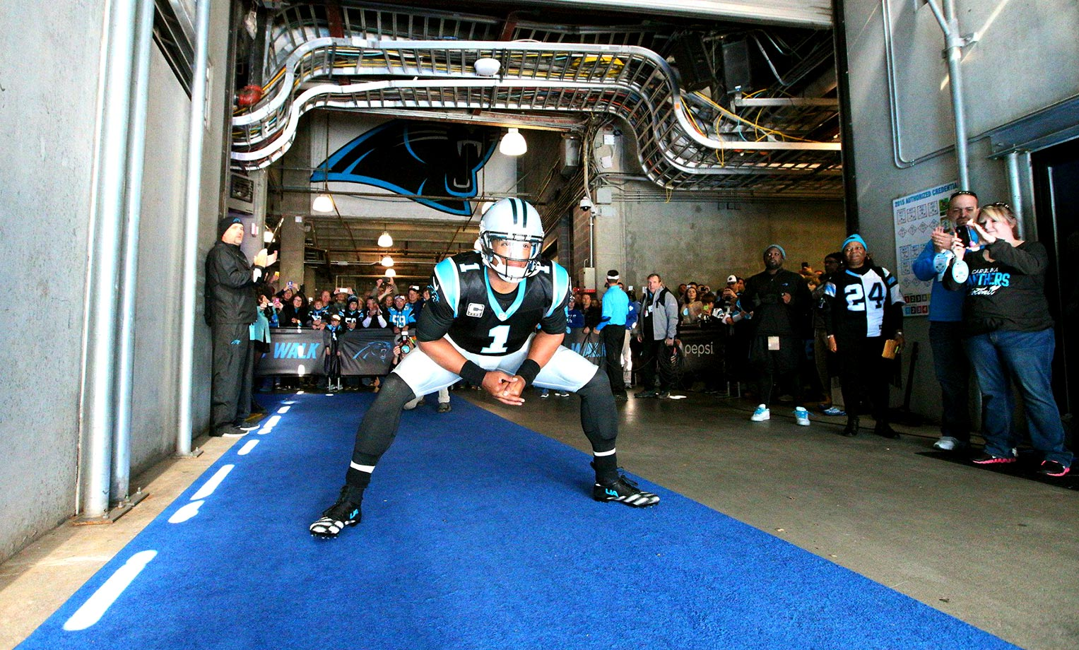 Cam Newton prepares to come out of the tunnel before a game at Bank of America Stadium.                                                               Text credit: Daniel Hersh