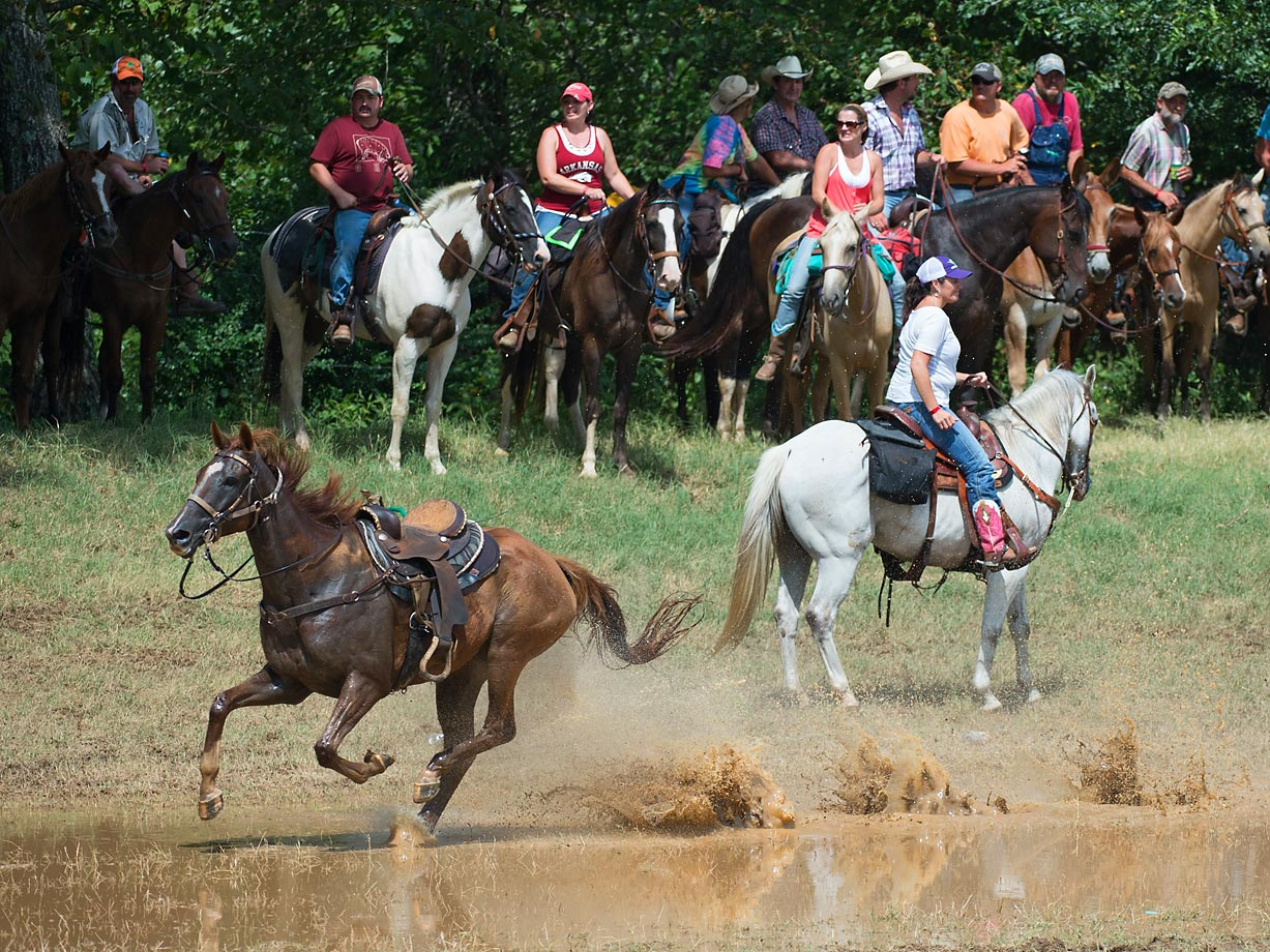 "Sometimes the outrider falls of his horse which results in a ""no time"" for that teams run."