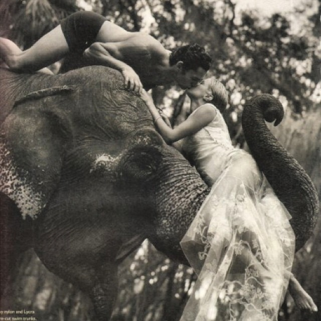 Me kissing a boy, on an elephant. As one does. @wmag #bruceweber