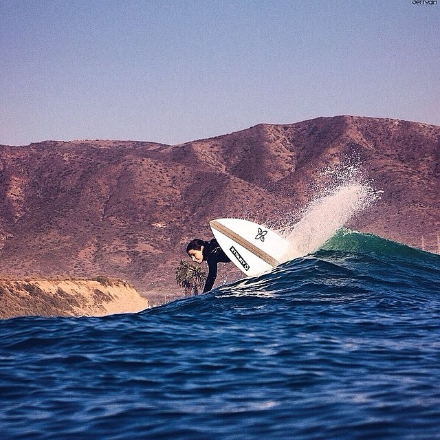 Love lowers in the summer @jettygirlsurfmag