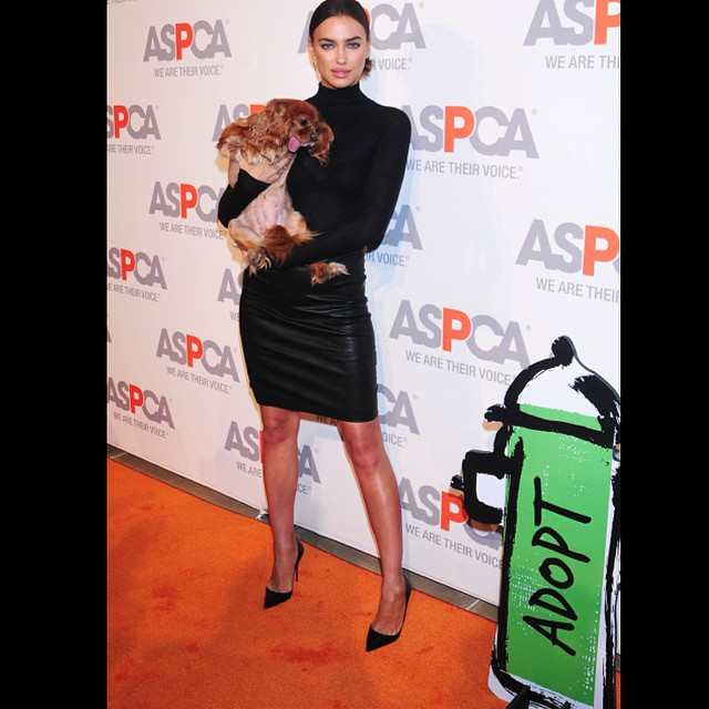 had such a great time raising awareness for one of my favorite charity organizations @aspca with @toastmeetsworld