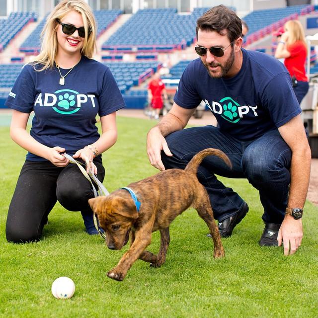 Happy #NationalPuppyDay! #AdoptDontShop @BCSO_Adopt @JustinVerlander