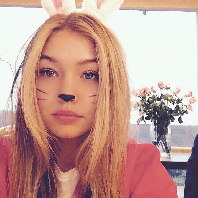 little bunny giii