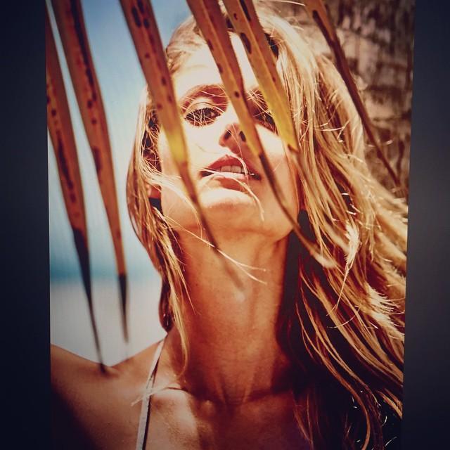 Between Palms by @deweynicks Hair @ward_hair Makeup @christy_coleman