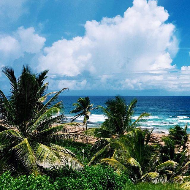 Woke up in Barbados