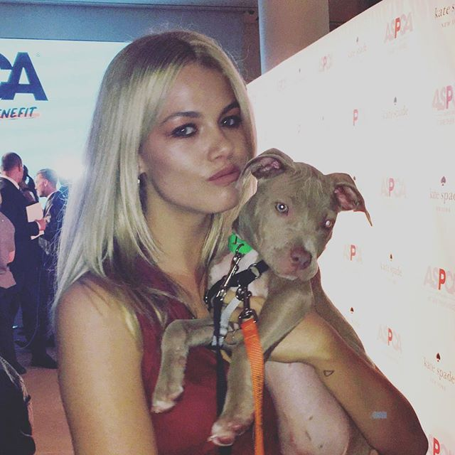 Had the most amazing time tonight at the @aspca event this evening and I got to snuggle lots of cute doggys! Including this baby pitbull everyone should check out there website and rescue an animal or do what you can to help