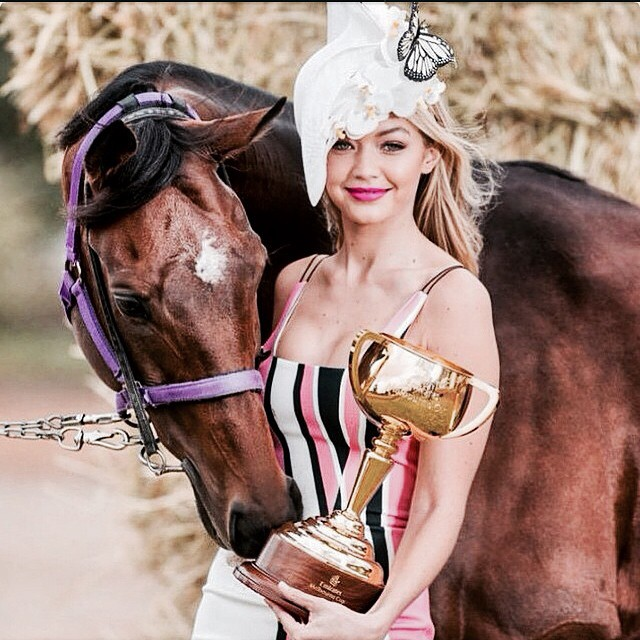 Got to spend some time with Melbourne Cup favorite Admire Rakti and show him the cup he'll be racing for tomorrow! Feisty one he is! Can't wait to watch from the @emirates marquee! Photo by @jasonedwardsphoto for @heraldsunphoto