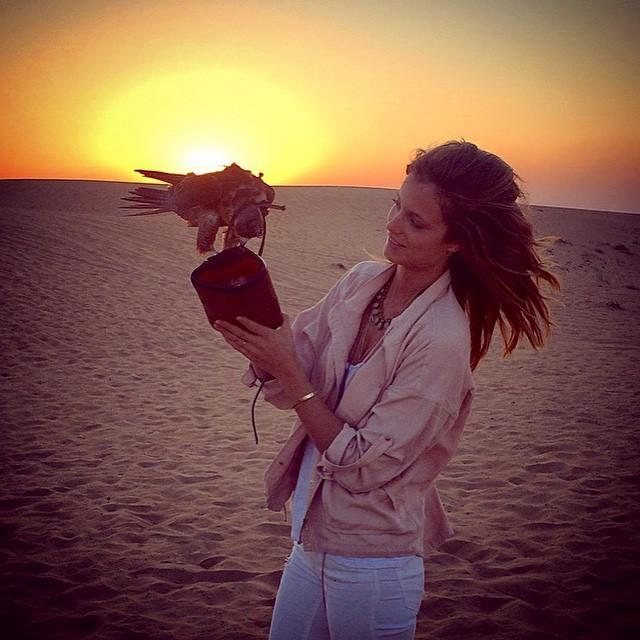 Sunset desert chillin' with a Falcon #MyDubai #BukhashBrothers