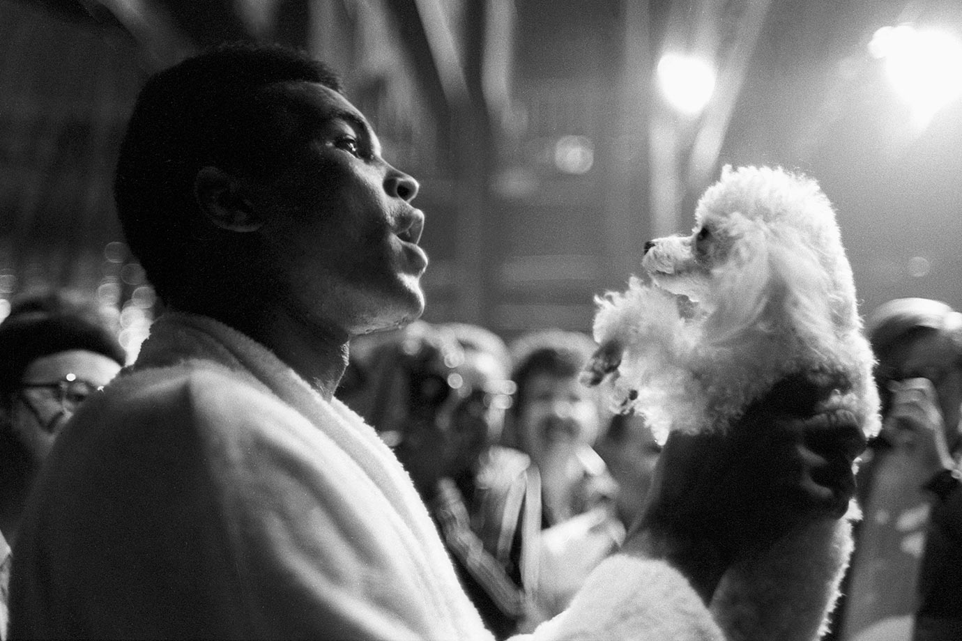 Before the fight with Bugner, Muhammad Ali enjoys a relaxed moment with a poodle at Caesars Palace Hotel. He won the fight with Bugner by unanimous decision.
