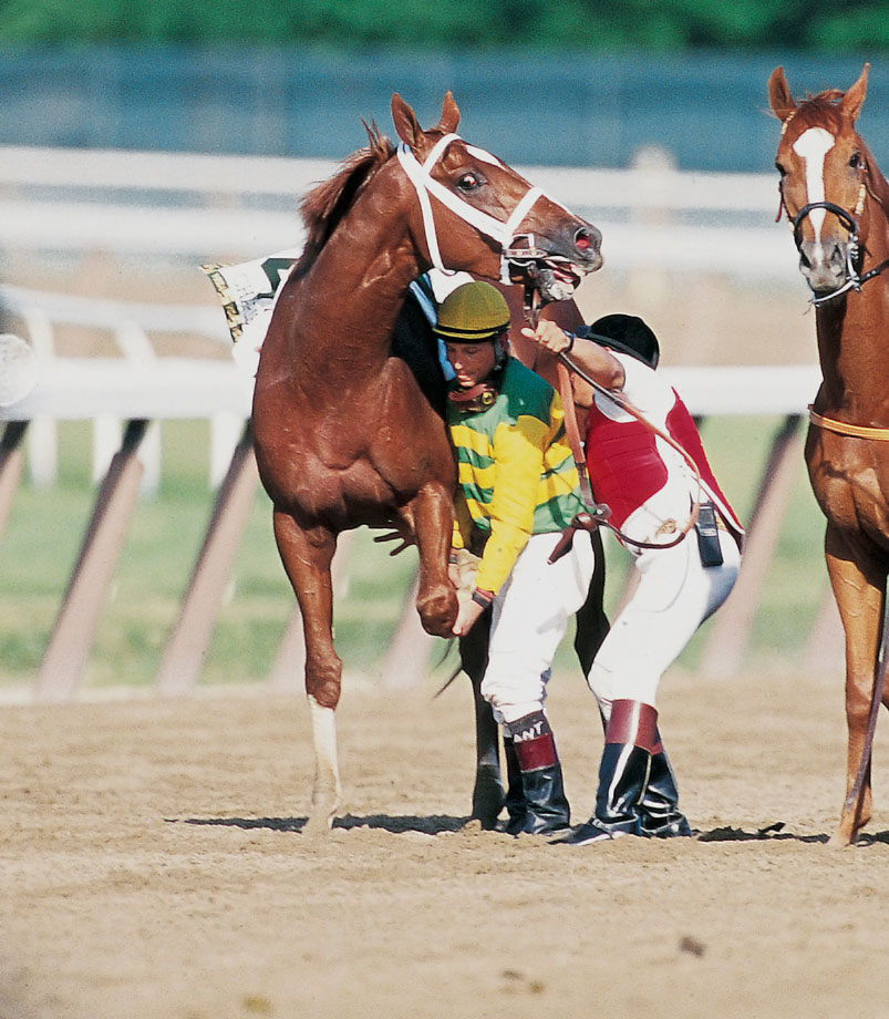 Starting the journey as a long shot, Charismatic won the Derby by a neck and the Preakness by 1 1/2 lengths. The magical run ended when he broke two bones in his lower leg on the Belmont homestretch, leading to a third-place finish and a sudden end to his racing career.