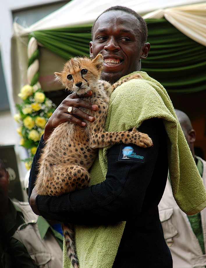 "Bolt holds a cheetah cub at the headquarters of the Kenyan Wildlife Service in Nairobi. Bolt adopted a cheetah and named her ""Lightning Bolt"" during the Zeitz Foundation launch in Kenya."