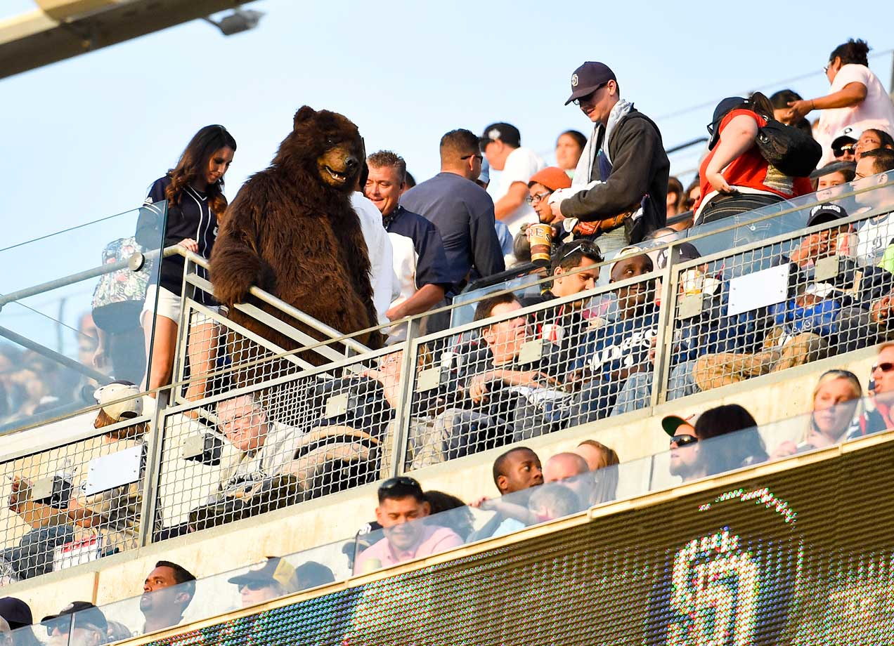 An unidentified fan wore a full bear costume to the Padres' 4-3, 11-inning win over the Nats.
