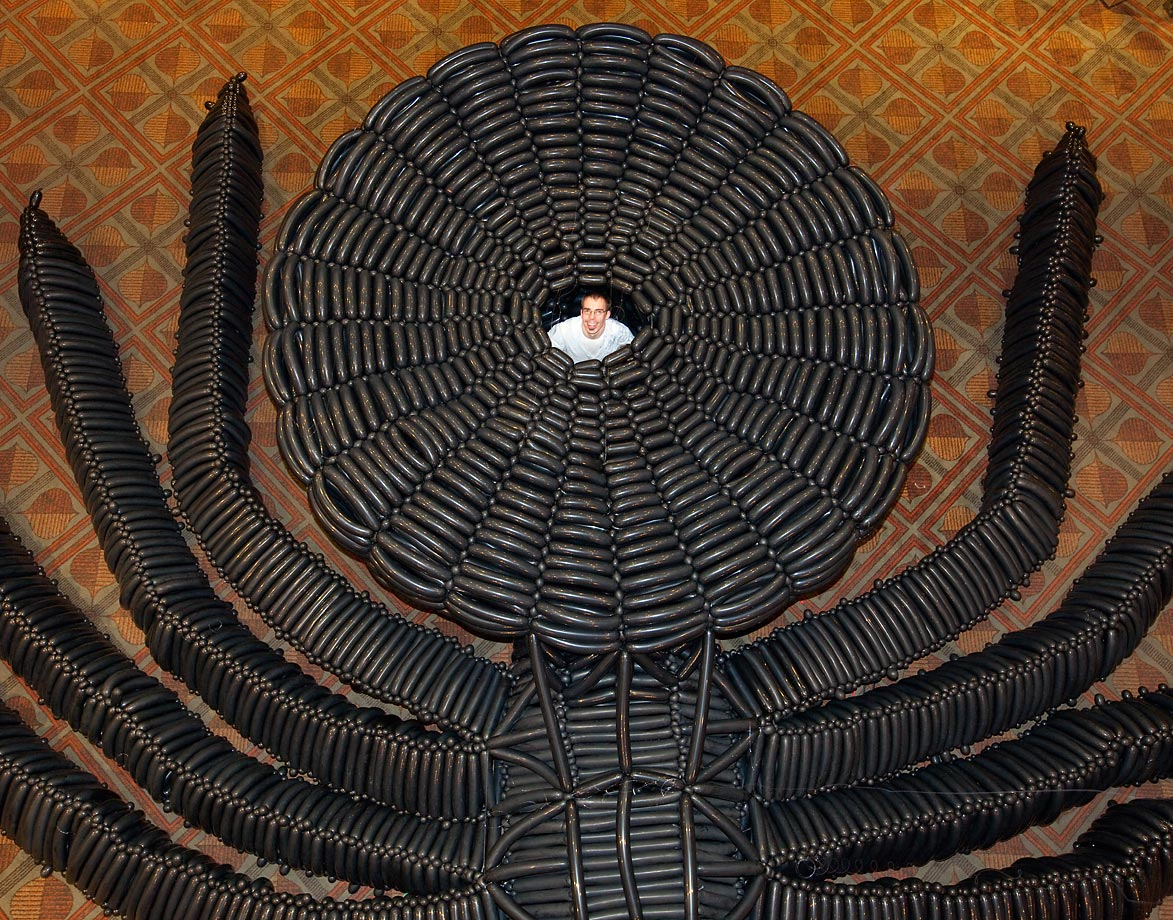 Adam Lee stands inside the spider sculpture that he used more than 3,000 balloons to create.