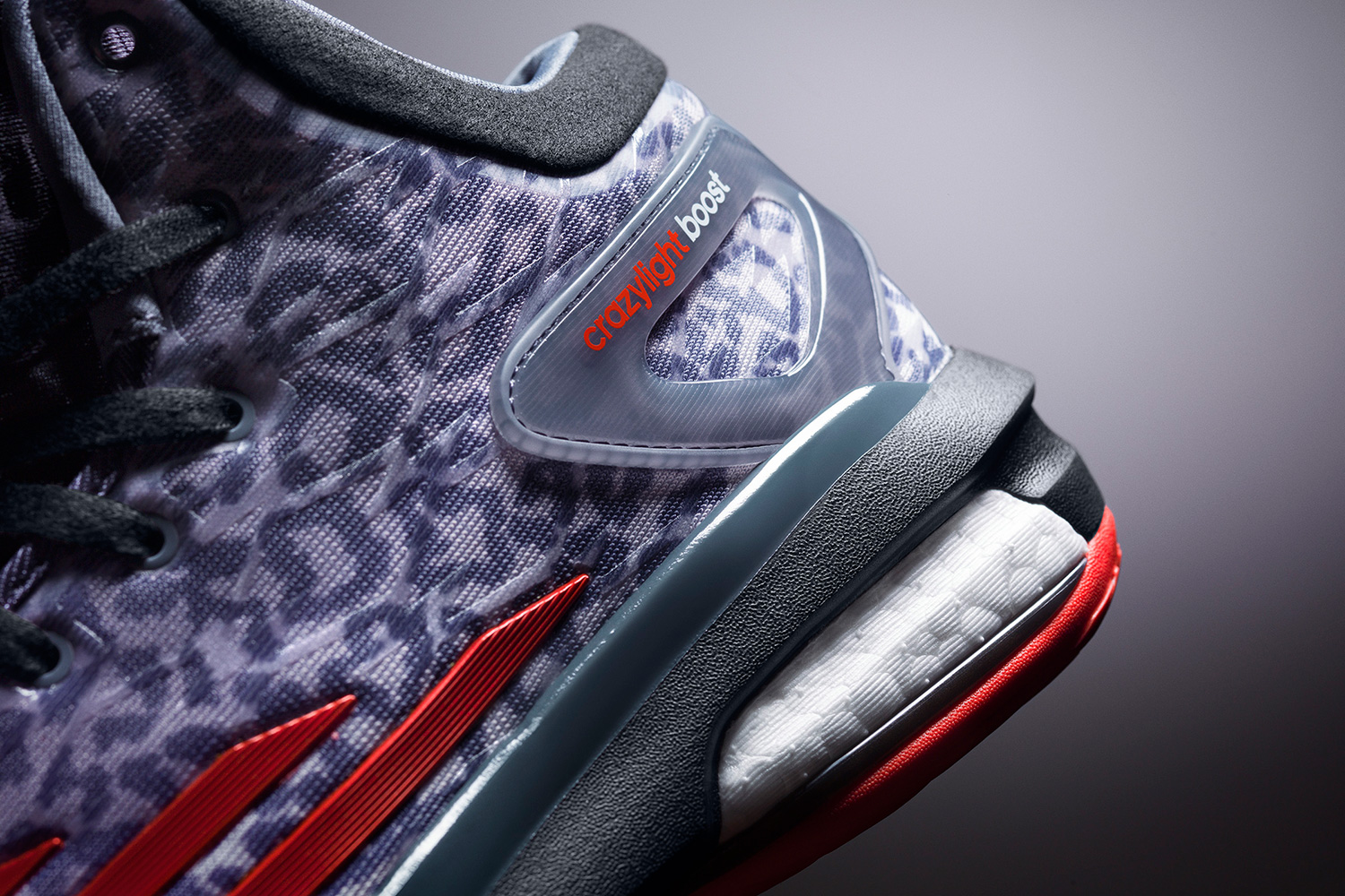 Crazylight Boost and D Rose 5 Boost (Photos by adidas)
