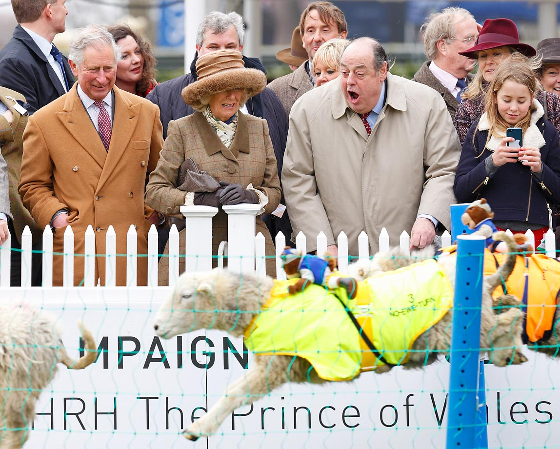 Prince Charles, Prince of Wales, Camilla, Duchess of Cornwall, and Sir Nicholas Soames watch the Campaign for Wool Lamb National sheep race at Ascot Racecourse.