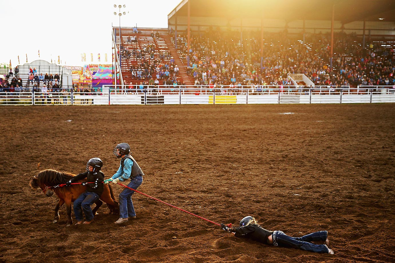 Wild Pony Race competitors during the 62nd Annual Wainwright Stampede in Alberta, Canada.