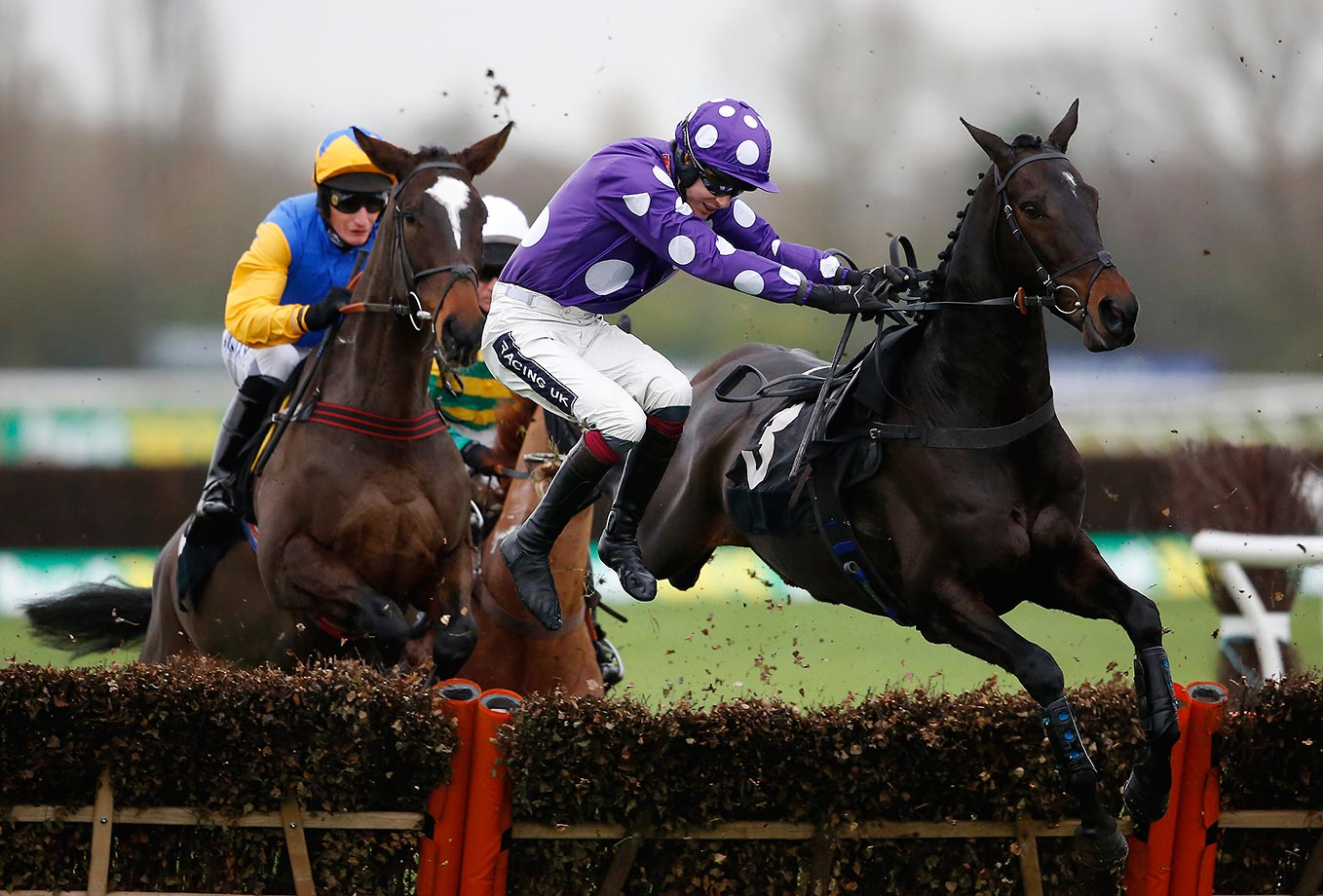 Aidan Coleman falling off Acajou Des Bieffes at the bet365 Novices' Hurdle Race at Newbury racecourse in England.
