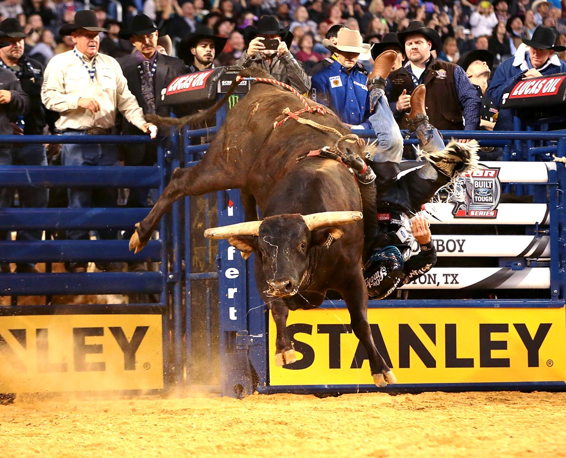 Mike Lee attempts to ride Circle T's Asteroid during the Arlington Iron Cowboy Built Ford Tough series PBR. World Champion PBR bull Asteroid made the final out of his storied career in Arlington this weekend during PBR's Iron Cowboy event.  He was retired after this event.