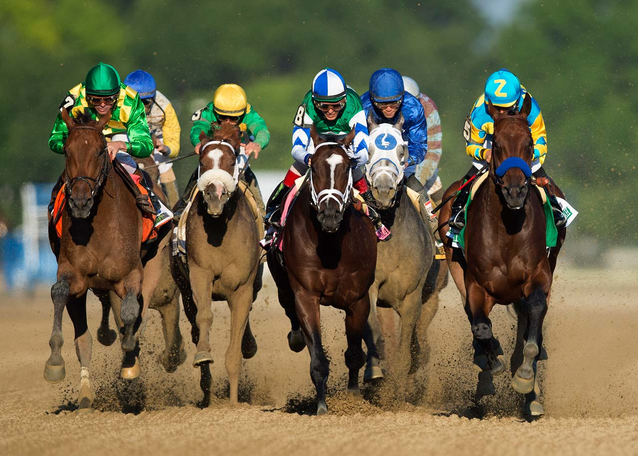 american horse races