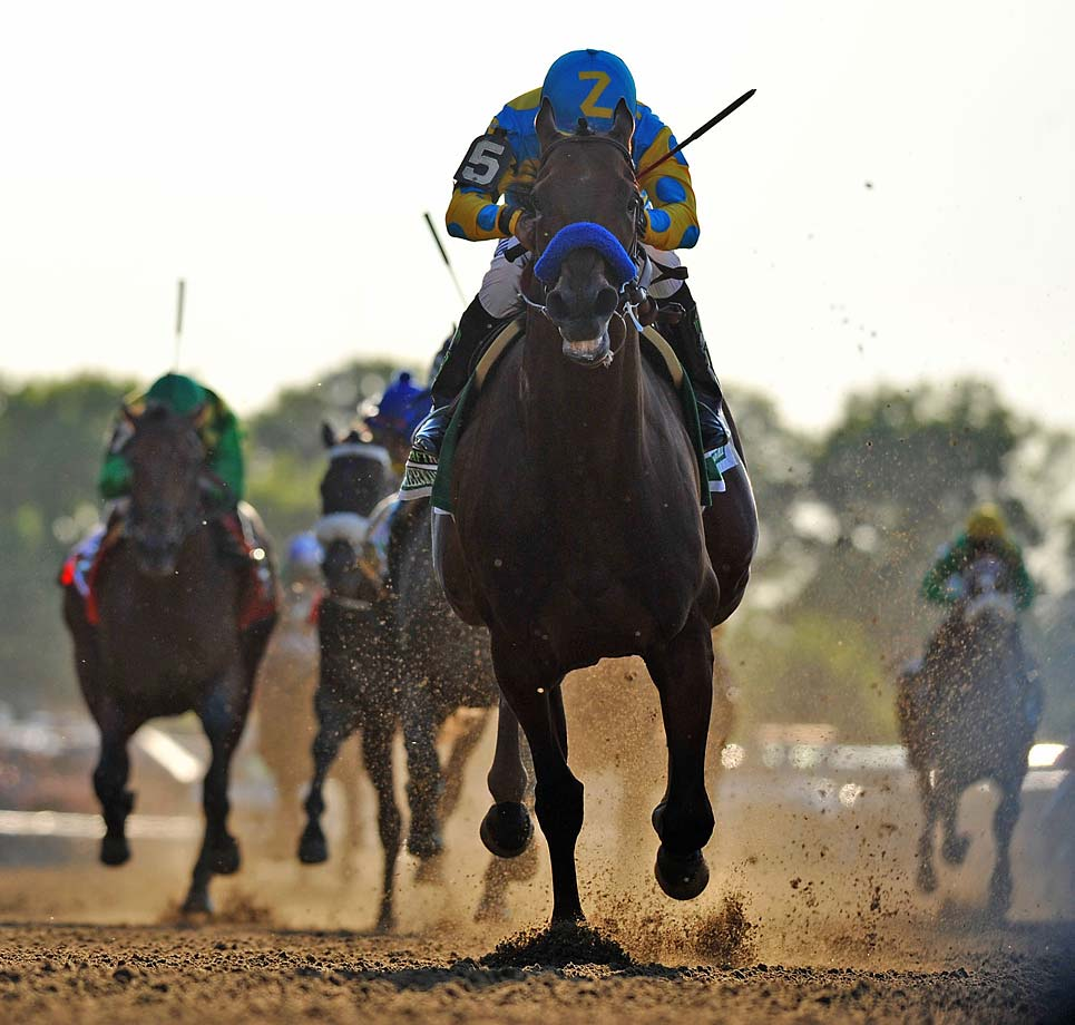 Sent off as the overwhelming 3-5 favorite, American Pharoah paid $3.50, $2.80 and $2.50. (Text credit: AP)