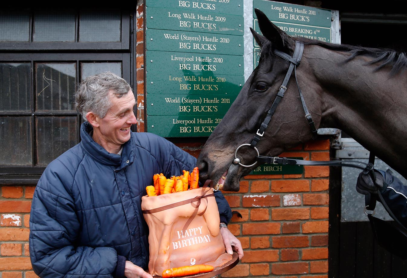 Superstar hurdler Big Buck's receives a birthday cake, which fittingly resembles a sack of carrots, from Great British Racing to celebrate his 11th birthday on Dec. 18, 2013.