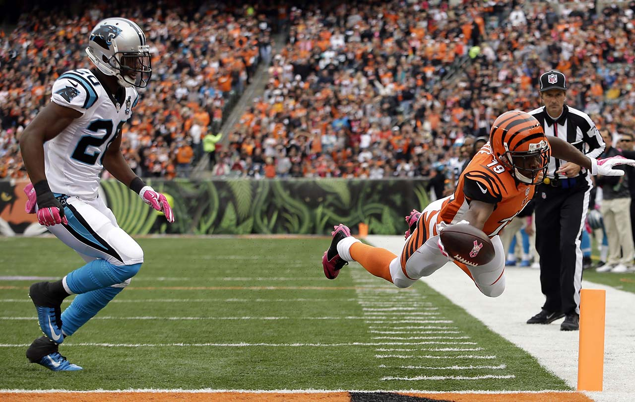Cincinnati Bengals wide receiver Brandon Tate dives into the end zone for a touchdown after catching a five-yard pass against Carolina Panthers cornerback Antoine Cason.