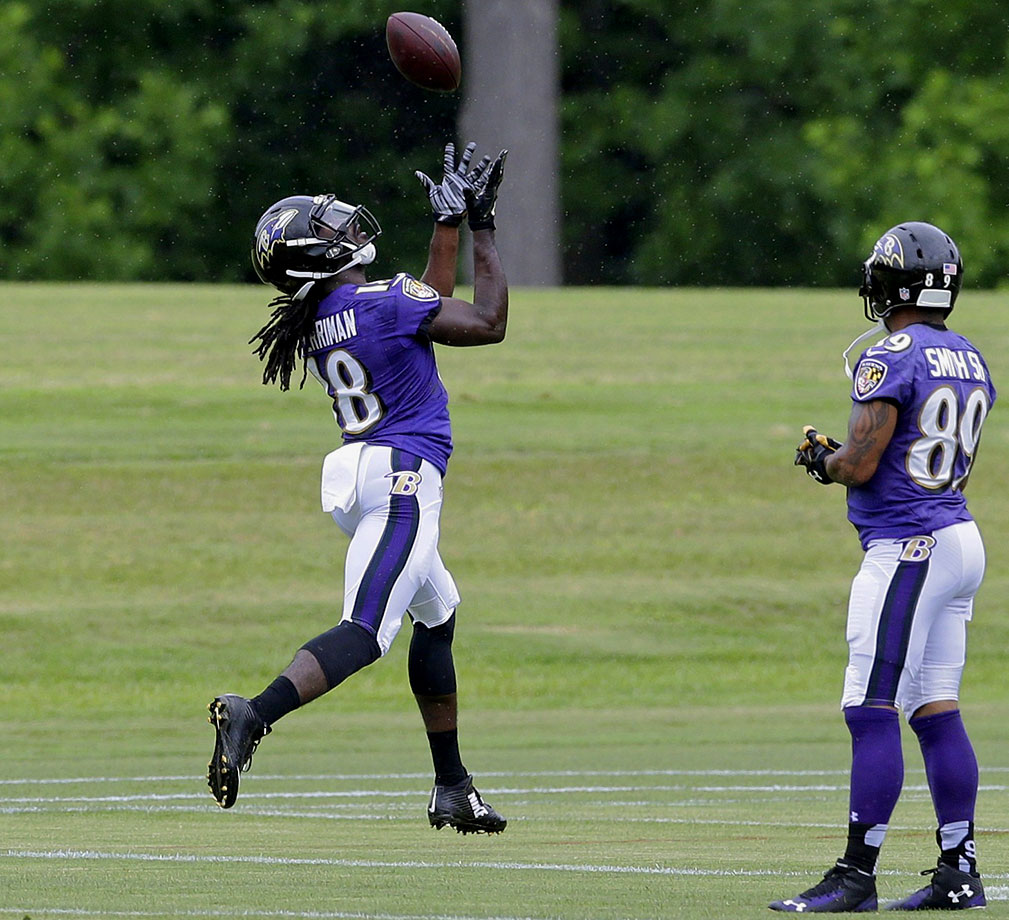 Perriman is expected to start alongside Steve Smith, taking over for the departed Torrey Smith. He's a true burner and becomes an immediate deep threat for Joe Flacco. Someone in every fantasy league should throw a late-round dart in his direction