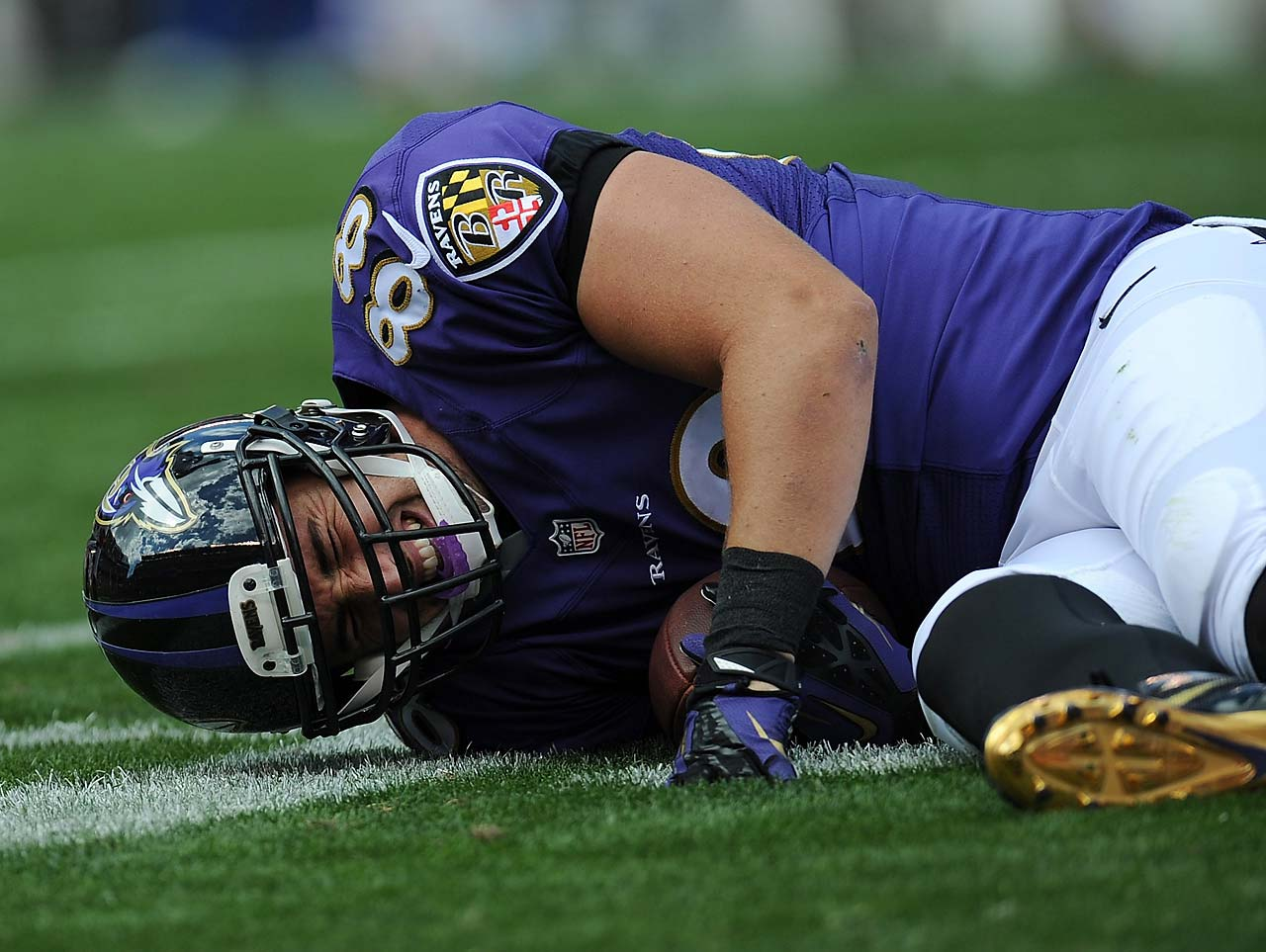 Dennis Pitta may be lost for the season after suffering a right hip dislocation in Sunday's win over Cleveland.