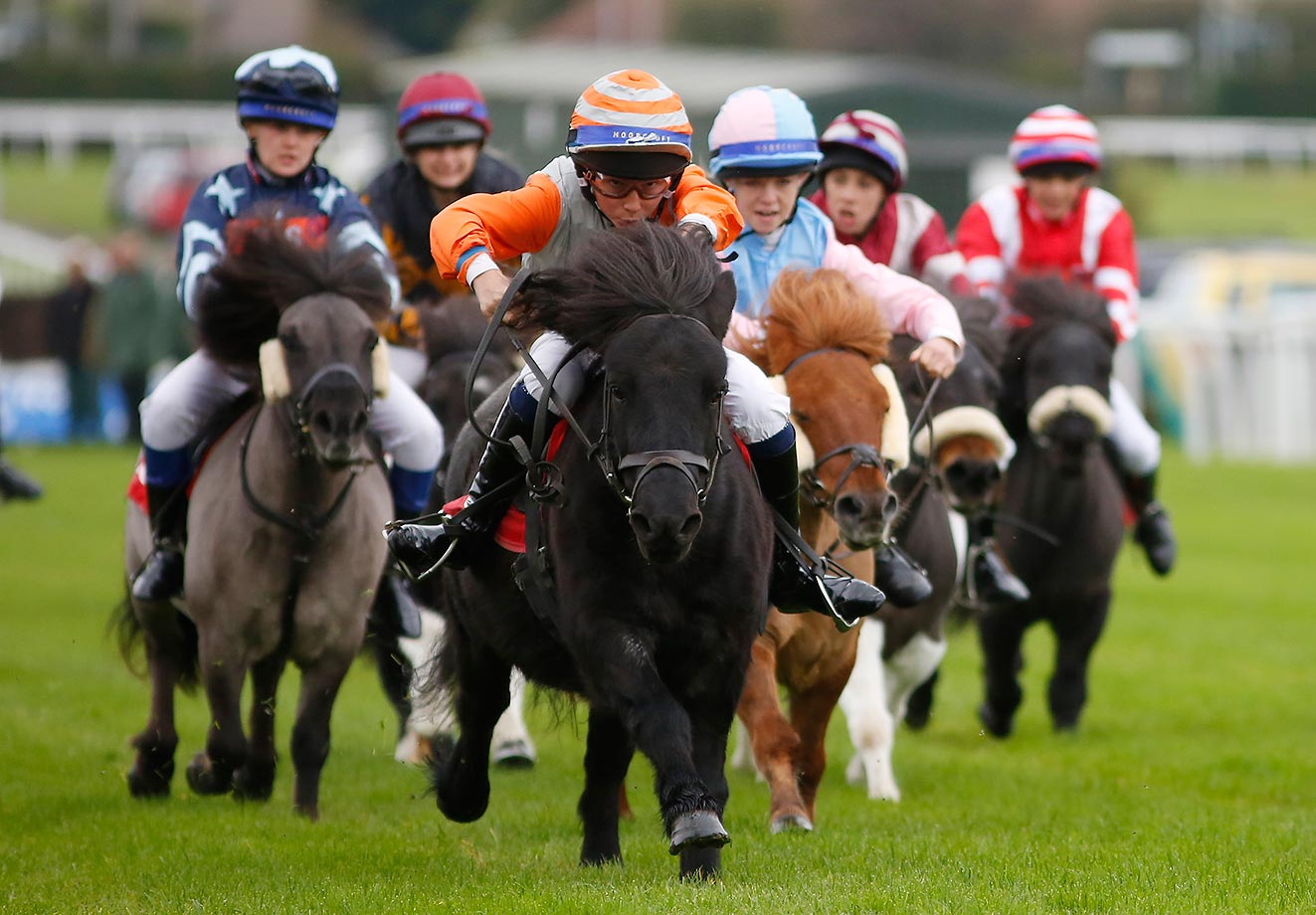 Bradley Kent, riding Bugsey (orange sleeves), wins The Moorcroft Racehorse Welfare Centre Shetland Pony Gold Cup in England.