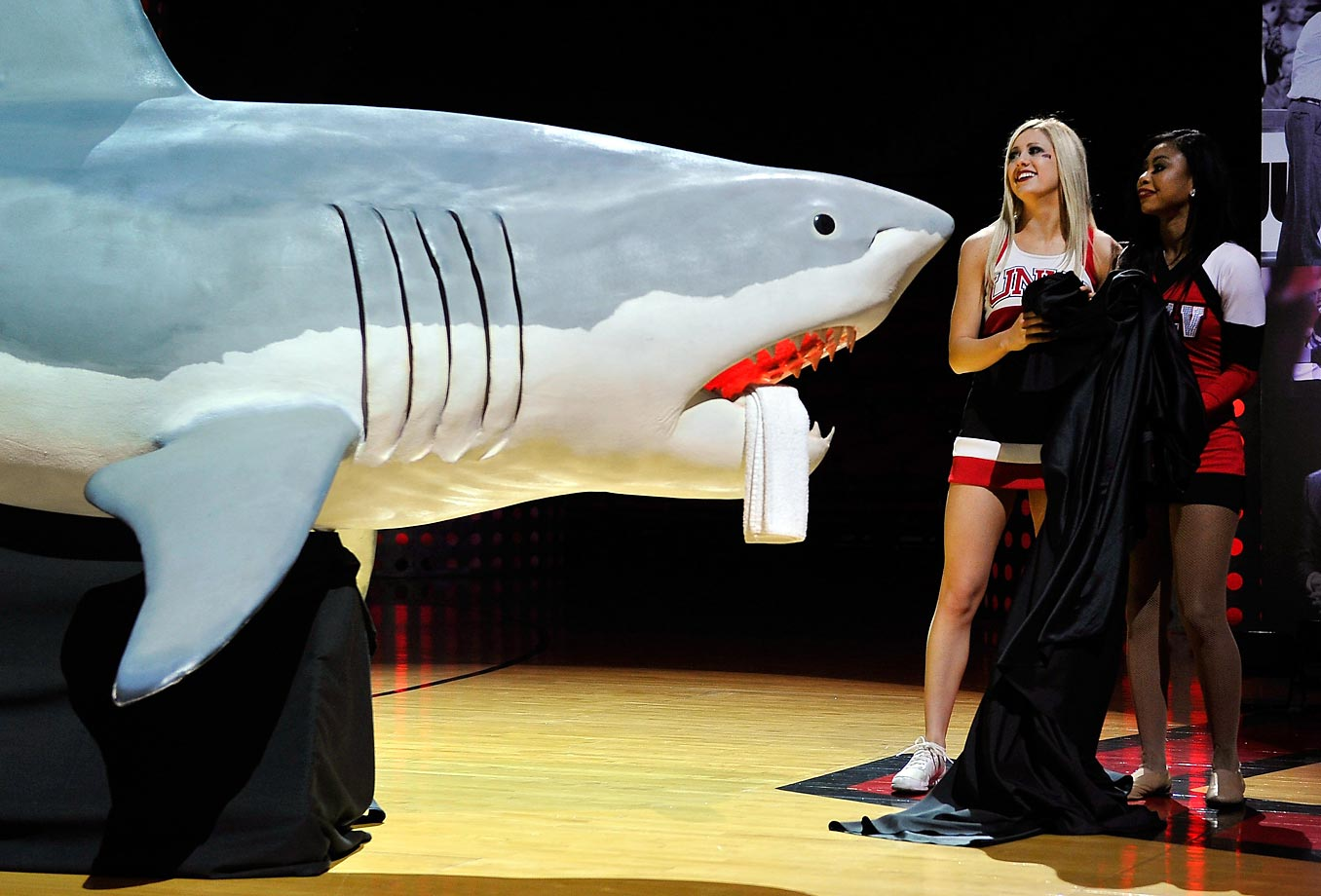 UNLV cheerleaders unveil a life-size shark during a tribute to former coach Jerry Tarkanian.
