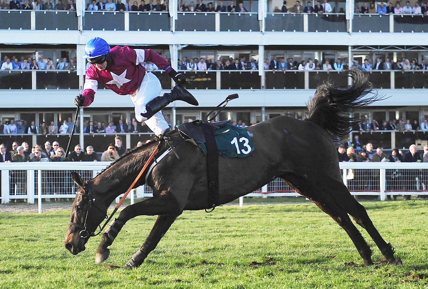 Jonny King is shot off of Thunder and Roses in The Toby Balding National Hunt Steeple Chase in Cheltenham, England.