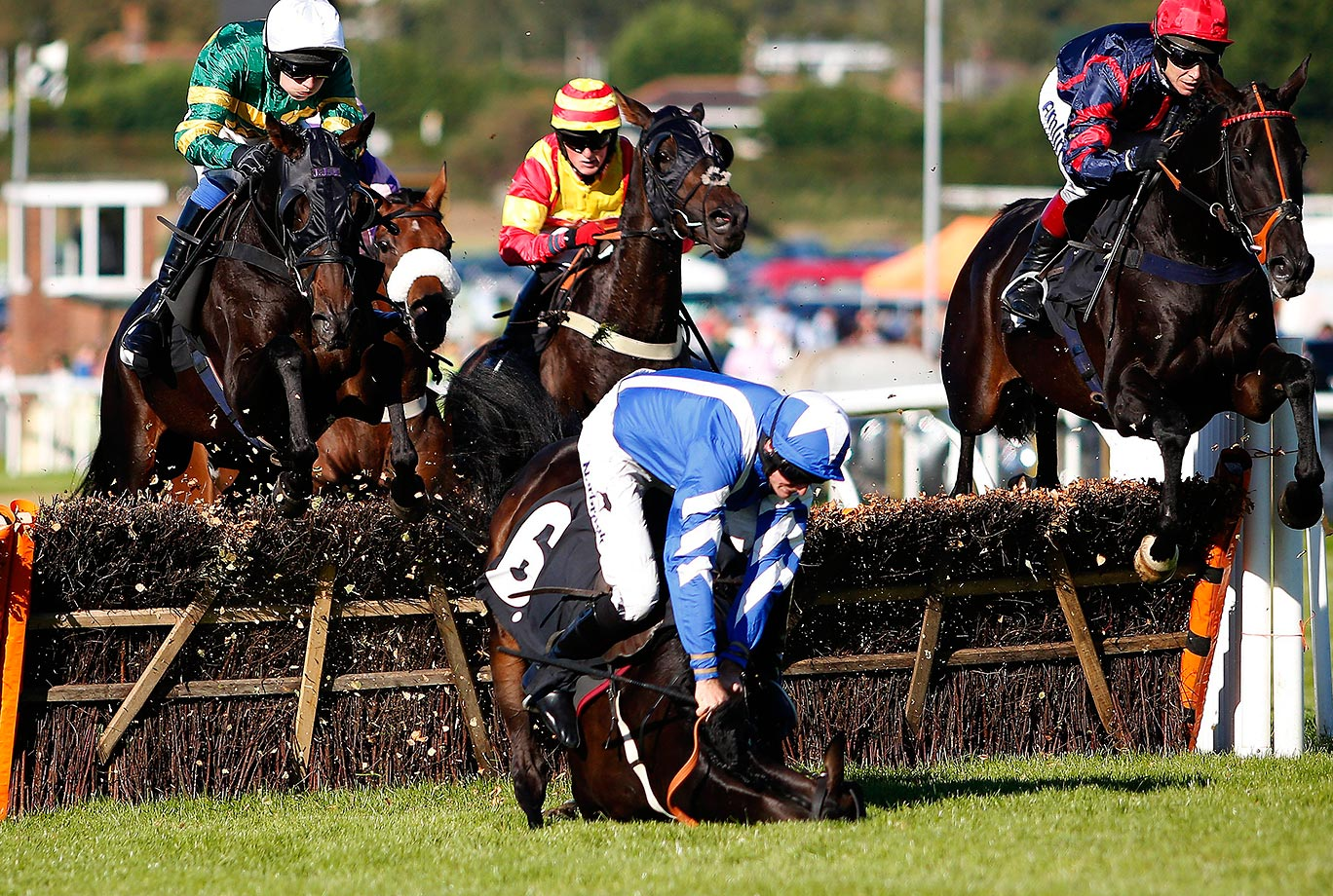 Marc Goldstein falls off Cannon Fodder in The midsussexflooring.co.uk Handicap Hurdle Race in Plumpton, England.