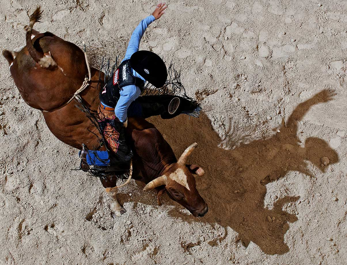 A professional bull rider at a 2013 rodeo in Hollywood, Fla.