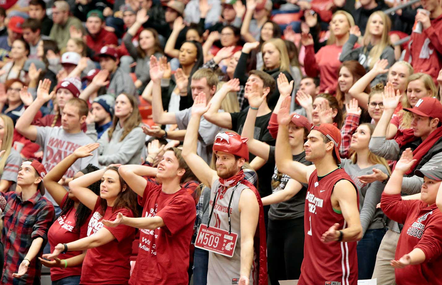 Fans for the Washington State Cougars cheer for their team during the game against the Colorado Buffaloes at Beasley Coliseum in Pullman, Wash.  Colorado defeated Washington State 75-70.