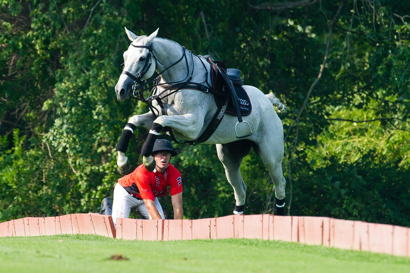 Audi's Nic Roldan watches his horse run away after taking a fall.