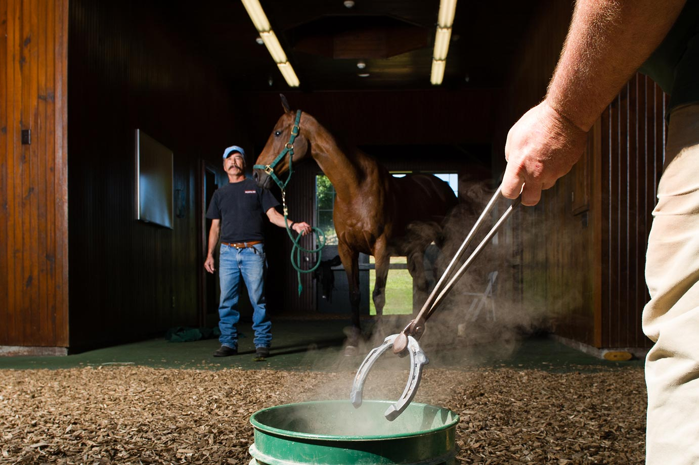White Birch Farm's farrier Martin Schnibbe cools a horseshoe at Peter Brant's White Birch Farm in Greenwich, Conn.