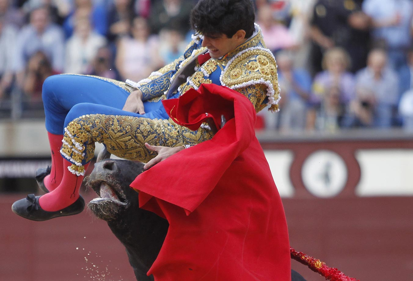 Spanish matador Alberto Lopez Simon is thrown in the air by a bull during the Otono Feria at Las Ventas bullring in Madrid.