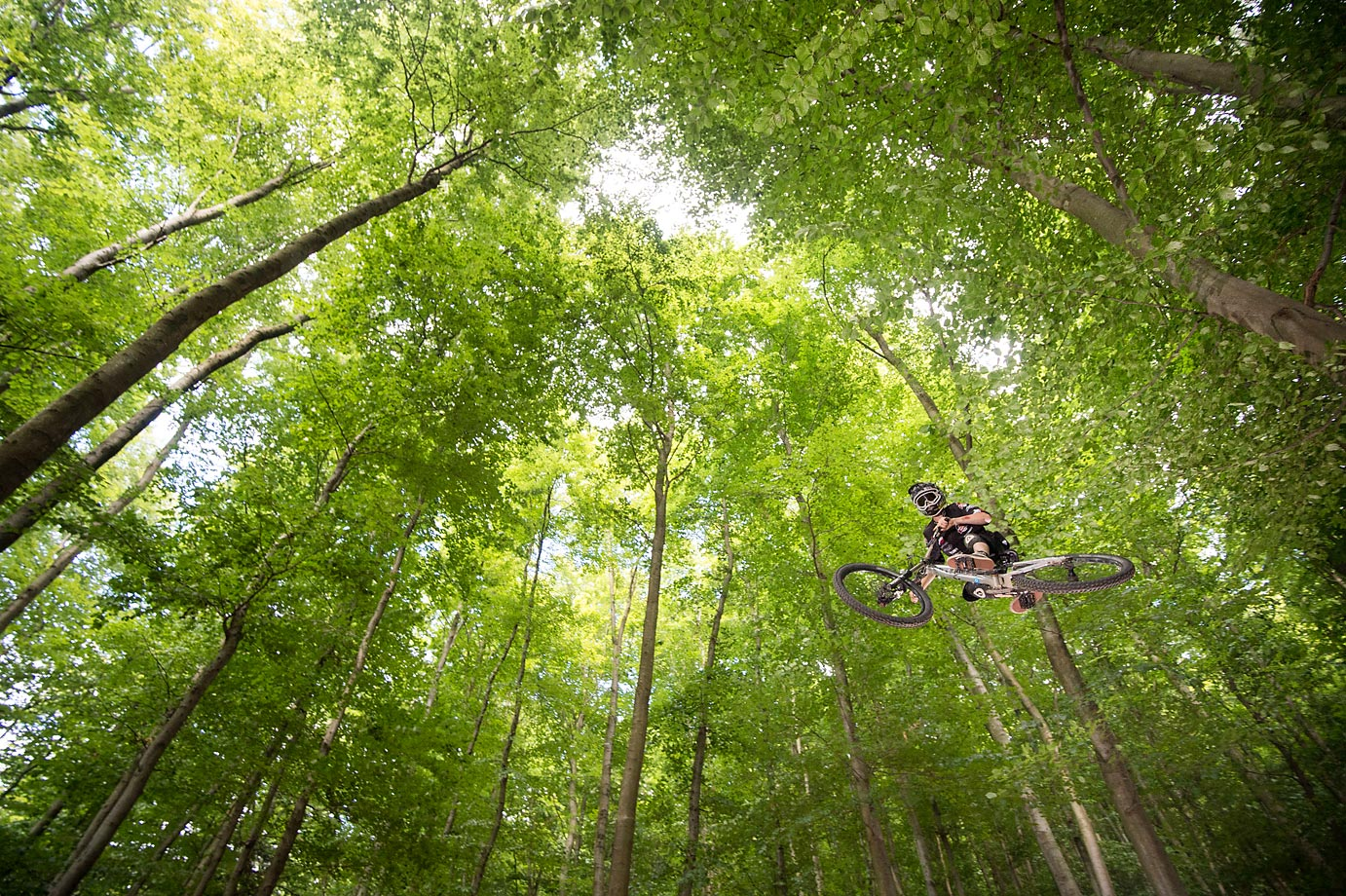 A downhill mountain biker performs at the 'Rinne' at the mountain 'Frankenstein' near Darmstadt, Germany.